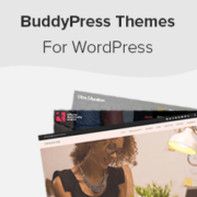 17 Best BuddyPress Themes for Your WordPress Website