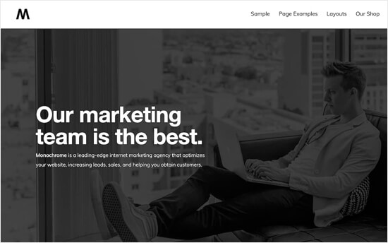 Monochrome Pro Theme for BuddyPress Online Community Website